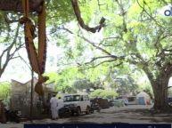 சாலையோரத்தில் தூங்கிக்கொண்டிருந்த குழந்தை கடத்தல்-வீடியோ