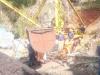 மேகாலயாவில் வெள்ளம்.. சட்டவிரோத நிலக்கரி சுரங்கத்தில் சிக்கிய 13 பேரின் நிலை என்ன?