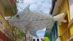 அந்தரத்தில் தொங்கும் மீன்... பிளாஸ்டிக் மறு சுழற்சி.. வித்தியாசமான விழிப்புணர்வு.. அசத்தும் புதுவை