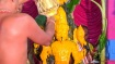பைரவர் ஜெயந்தி : 64 பைரவர் யாகம் 64 அபிஷேகங்கள் - தன்வந்திரி பீடத்தில் கோலாகலம்