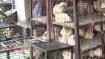 தமிழகத்தில் திறந்திருக்கும் இறைச்சி கடைகளில் மிக நீண்ட வரிசை- ரூ1,000-த்தை தொடும் ஆட்டிறைச்சி விலை!