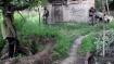 புல்வாமாவில் பாதுகாப்பு படையினர் அதிரடி தாக்குதல்- பதுங்கி இருந்த ஒரு தீவிரவாதி சுட்டுக் கொலை