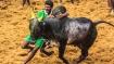 மதுரை பாலமேட்டில் உற்சாகமாக ஜல்லிக்கட்டு- சீறிபாயும் 783 காளைகள்.. மாடுபிடி வீரர்கள் சாகசம்