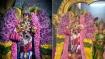 தைப்பூசம் தெப்பத்திருவிழா - திருப்பரங்குன்றம் முருகன் கோவிலில் கொடியேற்றம்