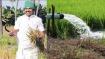 ஏப்ரல் 1 முதல் விவசாயிகளுக்கு மும்முனை மின்சாரம்- முதல்வர் அதிரடி அறிவிப்பு