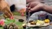 மகாளய பட்சம் 2021:  பித்ரு பட்சம்... முன்னோர்களுக்கு தர்ப்பணம் தர ஏற்ற 15 நாட்கள்