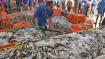 புரட்டாசி எண்ட்.. இனி சின்ராசை கையில பிடிக்க முடியாது.. மீன் மார்க்கெட்டில் குவிந்த அசைவ பிரியர்கள்