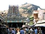 வைகாசி விசாகம் : திருப்பரங்குன்றத்தில் பால்குடம் - பழனியில் தேரோட்டம்