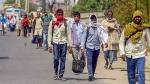 கொரோனா லாக்டவுன்: சாலை விபத்துகளில் மட்டும் 196 இடம்பெயர் தொழிலாளர்கள் மரணம்