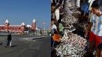 17 நாட்களுக்குப் பின் சென்னையில் லாக்டவுன் கட்டுப்பாடுகள் தளர்வு - இறைச்சி கடைகள் ஹோட்டல்கள் திறப்பு