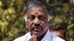 நான்தான் அதிமுக.. கெத்து காட்ட தலைமைக் கழகம் வந்த ஓபிஎஸ்- திடீர் ஆலோசனை