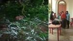 பீகாரின் திப்ராவில் 2 வெடிகுண்டுகள் கண்டுபிடிப்பு.. தேர்தல் நாளில் பரபரப்பு