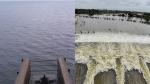 செம்பரம்பாக்கம் ஏரியில் இருந்து 1000 கன அடி நீர் திறப்பு - வெள்ள அபாய எச்சரிக்கை