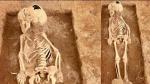கீழடி: கொந்தகையில் முதுமக்கள் தாழியில் மனித எலும்புக்கூடு - ஆணா, பெண்ணா என ஆய்வு