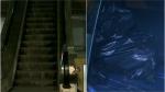 அடையாறு பறக்கும் ரயில் நிலையம்.. கொஞ்சம் உற்று பார்த்தால்.. மனித எலும்பு கூடு.. பதறிப்போன பயணிகள்