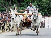 தூத்துக்குடியில் பல ஆண்டுகளுக்கு பிறகு ரேக்ளா ரேஸ்- கிராம மக்கள் உற்சாகம்!!
