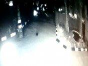 கடலூர் போலீஸ் ஸ்டேஷன் முன்பு தலையை வெட்டி வீசிய கொலையாளிகள் - பரபரப்பு வீடியோ