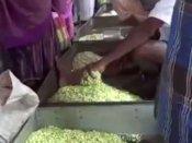தசரா பண்டிகை... நெல்லையில் மல்லிகைப் பூக்களின் விலை கிடு கிடு உயர்வு