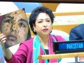 காஸா பெண் புகைப்படத்தை காட்டி ஐ.நாவில் அசிங்கப்பட்ட பாகிஸ்தான்