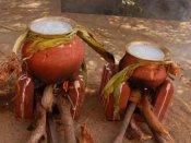 தை திருநாள்: பொங்கல் வைக்க நல்ல நேரம்