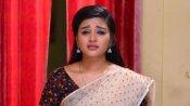 Sembaruthi Serial: ஒன்பது மணிக்கு சானல்களை போட்டி போட வச்ச செம்பருத்தி சீரியல்!