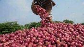வெங்காய ஏற்றுமதிக்கு இந்தியா தடை- நேபாளத்தில் கிடுகிடு விலை உயர்வு- சிங்கப்பூரில் தட்டுப்பாடு அபாயம்