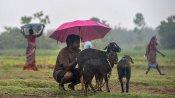வங்க கடலில் புதிய காற்றழுத்த தாழ்வு பகுதி... தமிழ்நாட்டில் கன மழைக்கு வாய்ப்பு- வானிலை மையம்