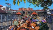 மகரஜோதி: சபரிமலை ஐயப்பன் ஜோதியாக காட்சி தரும் 'பொன்னம்பல மேடு'