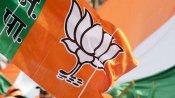 குஜராத் உள்ளாட்சி தேர்தல்.. திரும்பிய இடமெல்லாம் பாஜகவுக்கு வெற்றி வெற்றி.. உற்சாக கொண்டாட்டம்