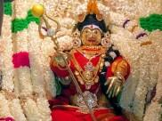 வாசுதேவநல்லூர் புரட்டாசி பொங்கல் விழா - சப்பரத்தில் உலா வந்த மாரியம்மன்