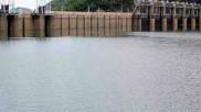 Papanasam Dam Water Level Today | பாபநாசம் அணை நீர்மட்டம் இன்று