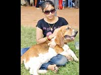 4 high breed dogs die in Chennai canine show