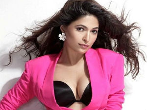 Parvathy Omanakuttan Is Worried Over Billa 2