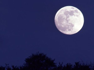 Don T Miss Blue Moon Tonight