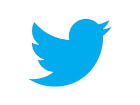 Govt Was Planning Ban Twitter 8 States