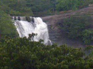 Cm Will Inaugurate Kutralam Falls P