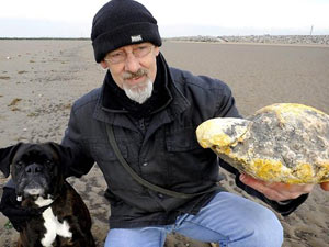 Man offered $65K for lump of whale vomit
