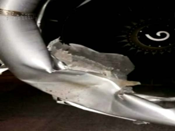 SpiceJet flight hits animal before take-off at Surat Airport