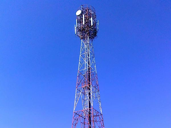 grandfather climb the cellphone tower for his grand daughter
