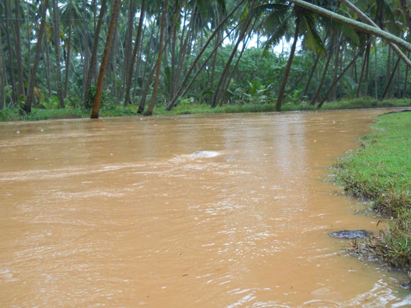 Officials thwart flood in village