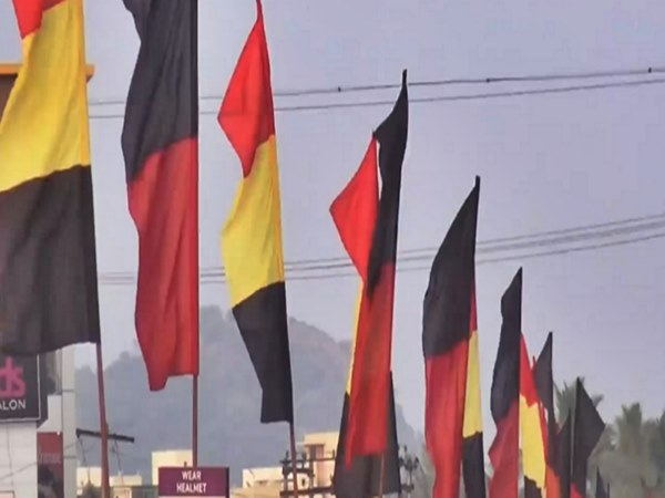 DMK and dmdk party flags are flying together