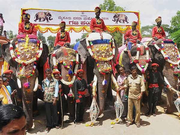மைசூர் தசரா யானைகளுக்கு ரூ.32 லட்சத்தில் இன்சூரன்ஸ்