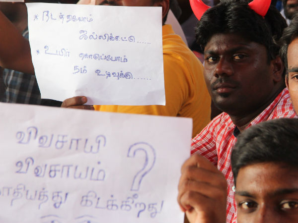 Jallikattu: Tanjore Saraboji collage students stage fasting protest