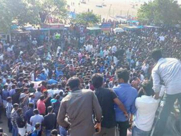 Rally in Chennai Marina demanding Jallikattu!
