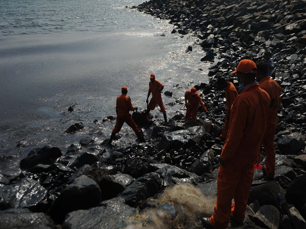 crude oil may be Affect Fish -says Environmental activists