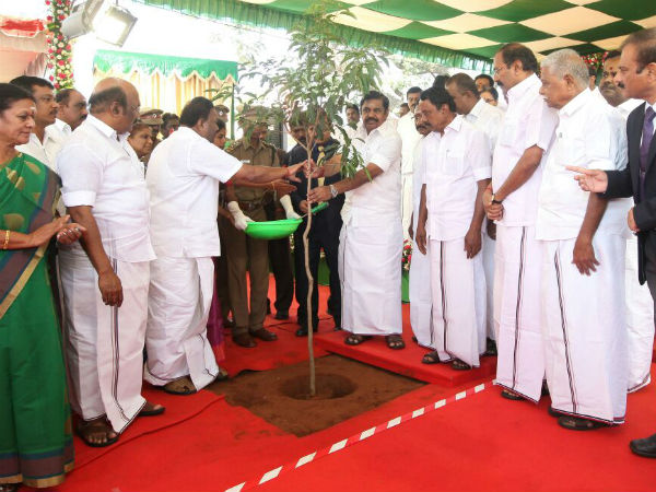 CM launches 69 lakh tree planting scheme on Jayalalithaa birthday