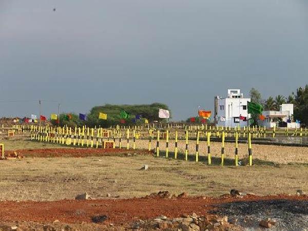 அங்கீகரிக்கப்படாத மனை: ரியல் எஸ்டேட் சட்டத்தை திருத்தம் செய்ய ஹைகோர்ட் உத்தரவு