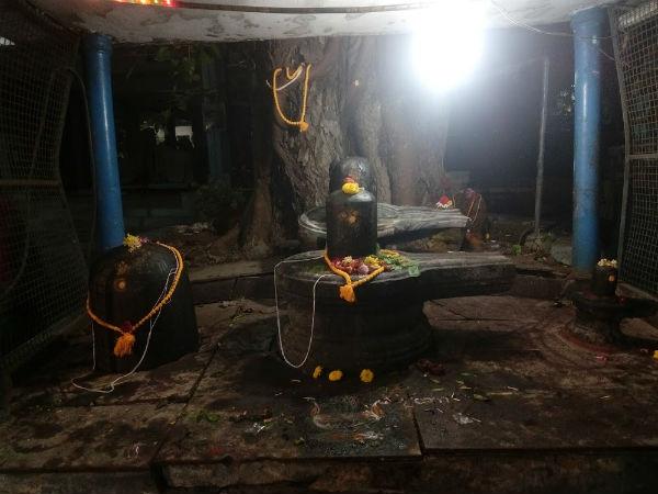 மகா சிவராத்திரி: சென்னை சிவ ஆலயங்களில் ஏற்பாடுகள் தீவிரம்