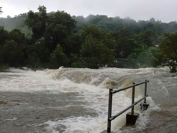 Rain in Nellai district, water inflow increased in papanasam dam
