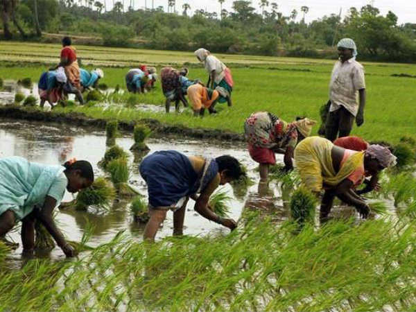 TN Budget : 7000 crores allocated for farmers